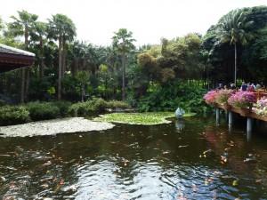 Лоро-Парк - визитная карточка Тенерифе